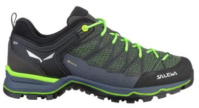 Herren Mountain Trainer Lite GTX Multifunktionsschuh